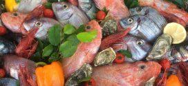 Variety of fresh fish at a restaurant in Malta