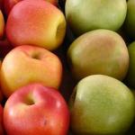 Fresh Apples Malta