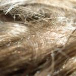 Haircuts Malta