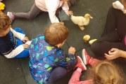 Happy Days Childcare Centre